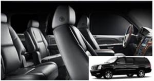 Tinley Park Limousine Fleet and Services