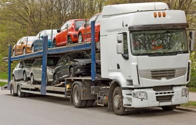 10069449_l-car carrier truck